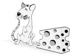 ist2_5491480-funny-rat